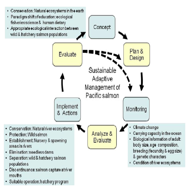 20130218adaptive_management.png