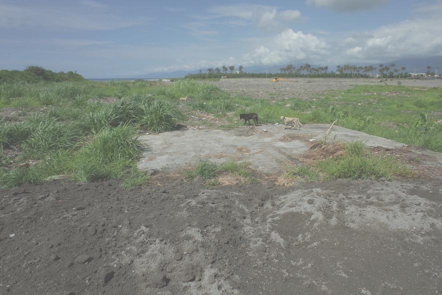2017年台東縣政府被發現把從高雄拿回的焚化底渣回填到太平溪出海口旁的綠地。
